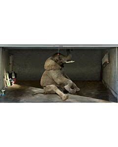 Garagentorplane Elefant