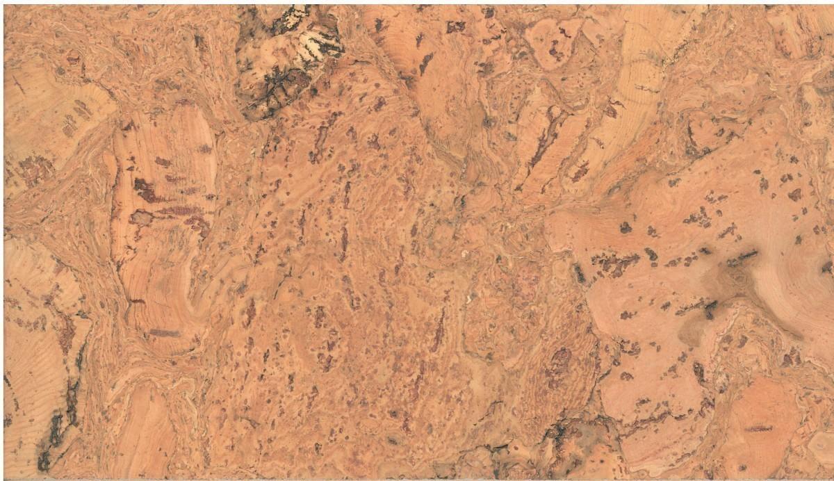 KWG Kork-Wandbelag HYD 6963 edelfurniert 300x600x3 mm 0,90 m²